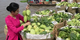 mekong-1-day-tour-vietnam-holiday-Oriental-Colours.jpg